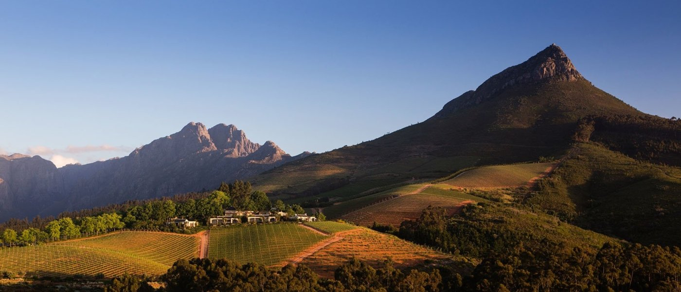 Wineries and wine tours in South Africa - Wine Paths
